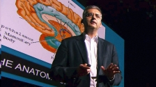 TED: Andres Lozano: Parkinson's, depression and the switch that might turn them off - Andres Lozano (2013)