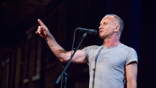 TED: Sting: How I started writing songs again -  Sting (2014)