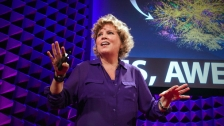TED: Jill Shargaa: Please, please, people. Let's put the 'awe' back in 'awesome' - Jill Shargaa (2014)